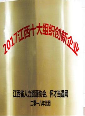 江西十大组织创新企业