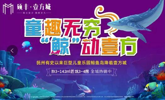 史上Zui大鲸鱼岛主题乐园人山人海,进入抚州