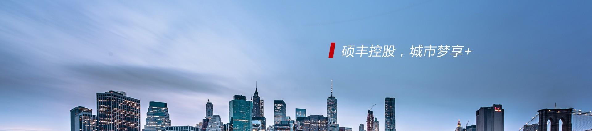 硕丰控股:小城市 大作为 焕新城市生机